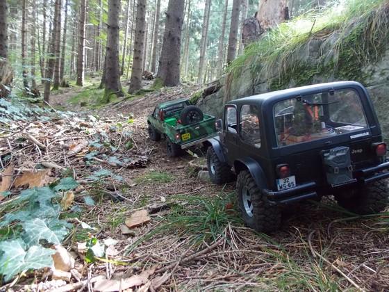 Heute wieder ein schöner Ausflug im Klosterwald!