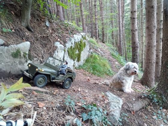 Mein Willys I bei seiner ersten Ausfahrt!