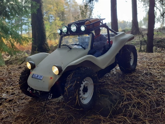 4 WD Buggy
