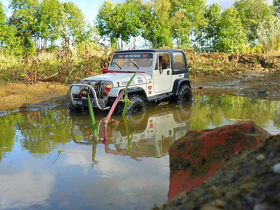 Wrangler Jeep in der Wildnis