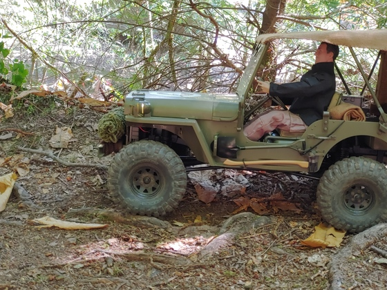 Willys - 001