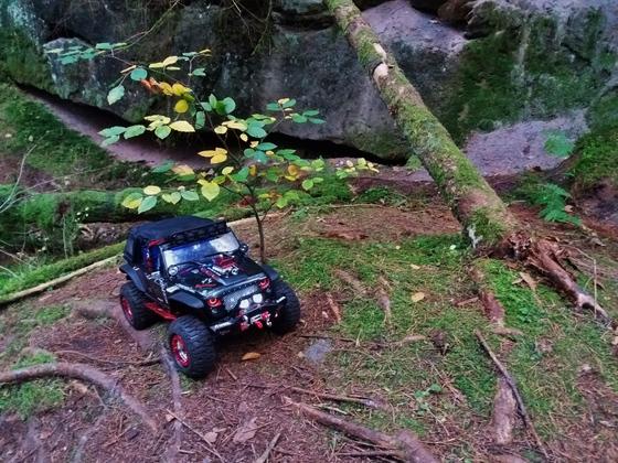 Jeep am Scalebäumchen und Baum ;-)