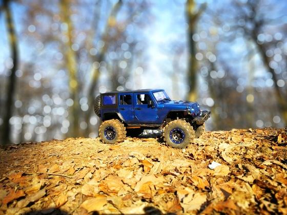 Mein Jeep Wrangler TRX-4