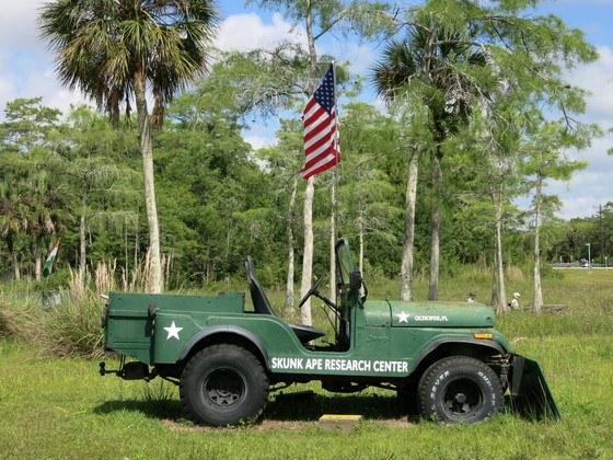 4x4 & Pickup Florida 2015