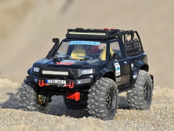 The Louise TRX Sport