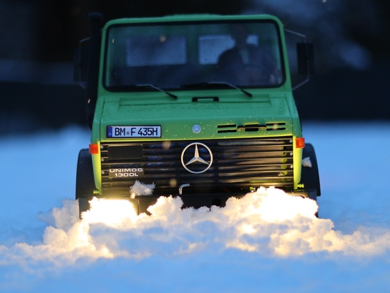 MOG im Schnee