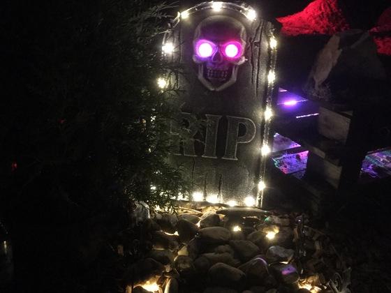 Halloween Trail (1)