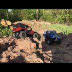 Jeep's im Wald