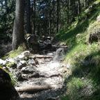 Offroadwanderung 2: Kirchspitz - Buchauer Alm (Maurach)