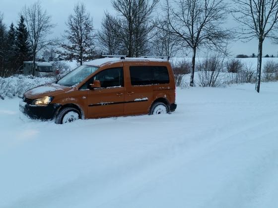 Caddy 4 Motion im Schnee