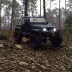 SWB TJ im Nebelwald